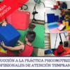 Introducción a la práctica psicomotriz para profesionales de Atención Temprana